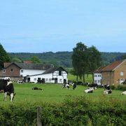 Gulpen-Wittem - Vakantie in Limburg