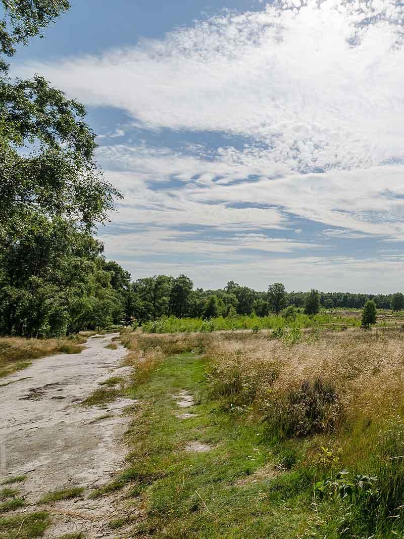 Nationaal Park De Maasduinen - Vakantie in Limburg