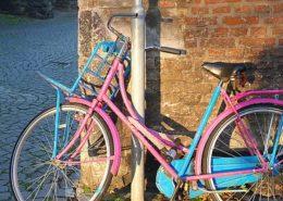 Steeds meer toeristen op de fiets in Limburg - Vakantie in Limburg