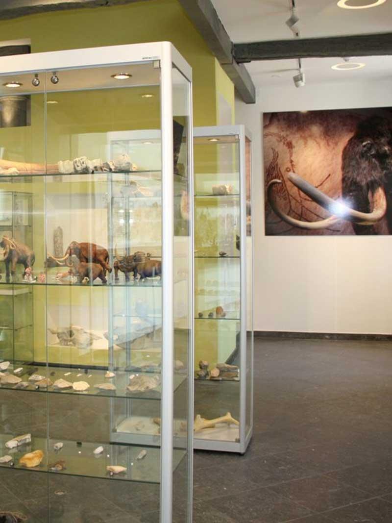 Erfgoedhuis Meerssen - Vakantie in Limburg