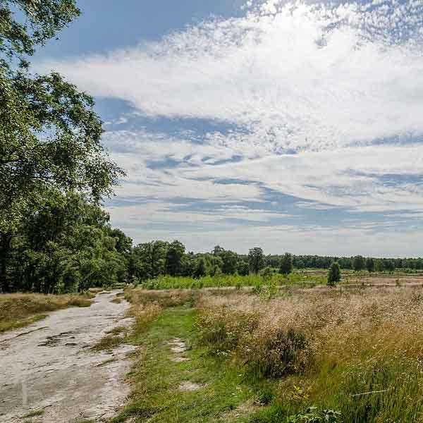 Grootste groei toerisme: Limburg in top vijf met bijna 4 miljoen overnachtingen