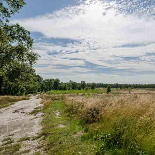 Mooie nieuwe natuurwandelingen in Zuid-Limburg