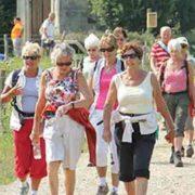 Heuvelland Wandel4daagse - Vakantie in Limburg