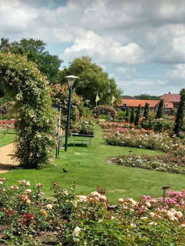 Rozenhof-Lottum - Vakantie in Limburg