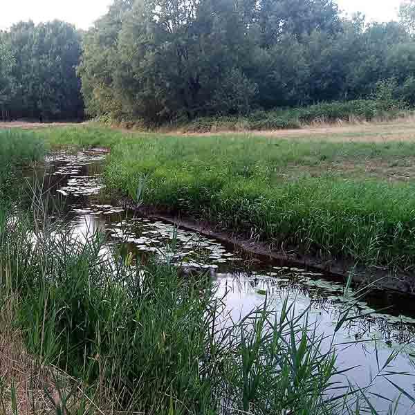 Nieuwe toeristische routes in Leudal - Vakantie in Limburg