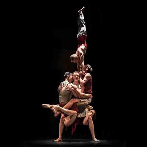 Voorstelling Driftwood van Casus Circus op 9 november in De Domeinen