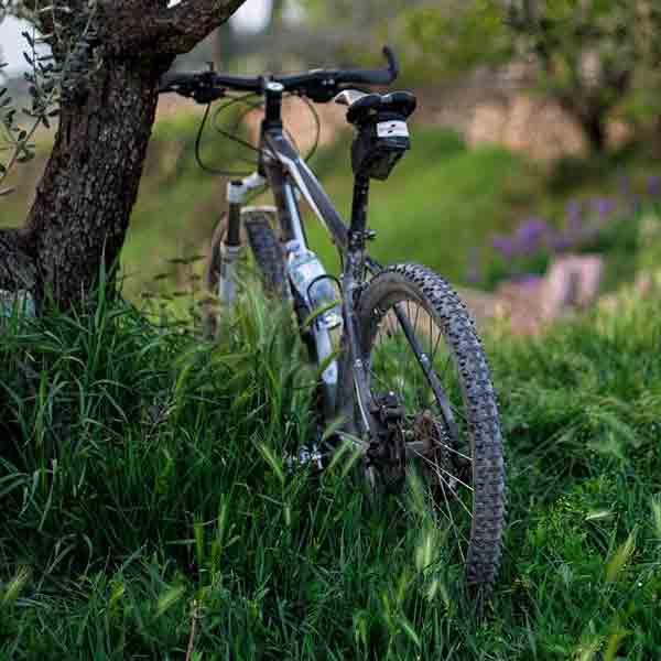 Impuls voor mountainbikeroutes Zuid-Limburg