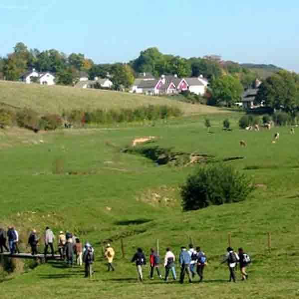 Sint Brigidawandeling 2019 - Vakantie in Limburg