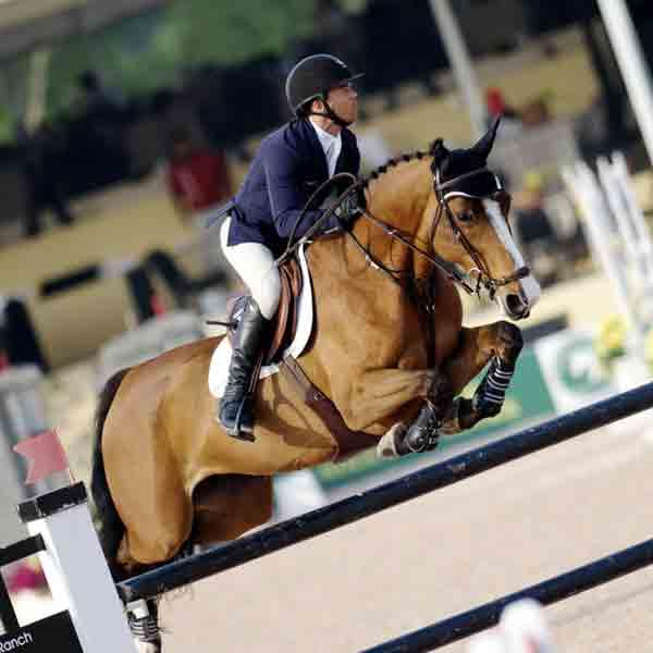 Winters Masters: Drie sterren springevenement in Equestrian Centre De Peelbergen - Vakantie in Limburg