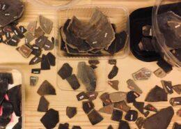 De Domijnen: Scherven brengen geluk - Romeinse schatten uit de Geleenbeek